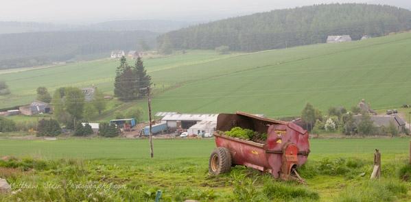 Farm-in-Scotland-8398